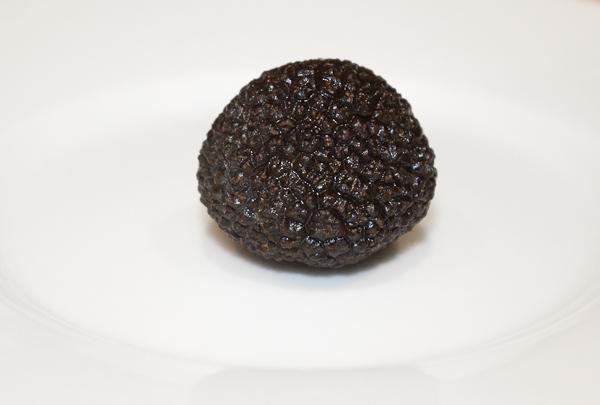 Trufa negra fresca (Tuber Melanosporum Vittad)